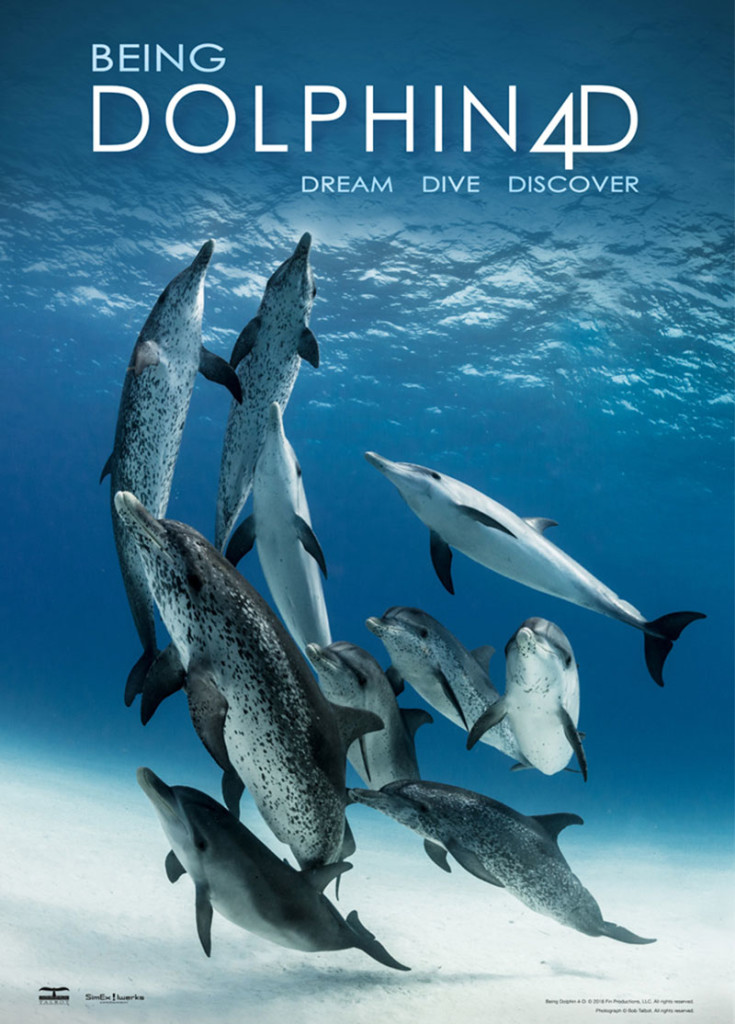 Being Dolphin 4D | Dream Dive Discover