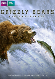 GRIZZLY BEARS: 4-D EXPERIENCE