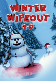 WINTER WIPEOUT 4-D