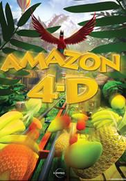 AMAZON 4-D